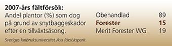 asa-forester