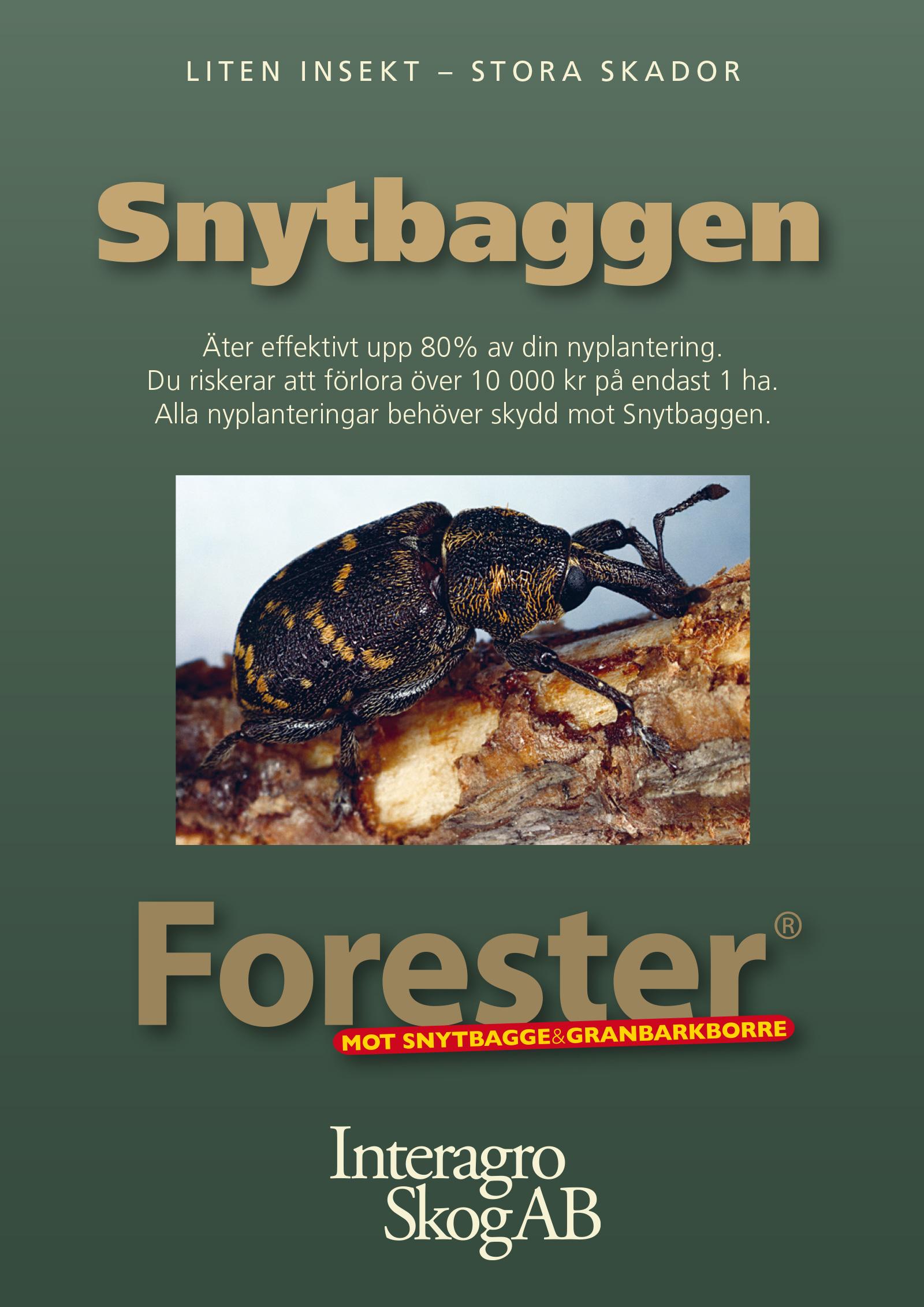 interagroskog-forester-2019