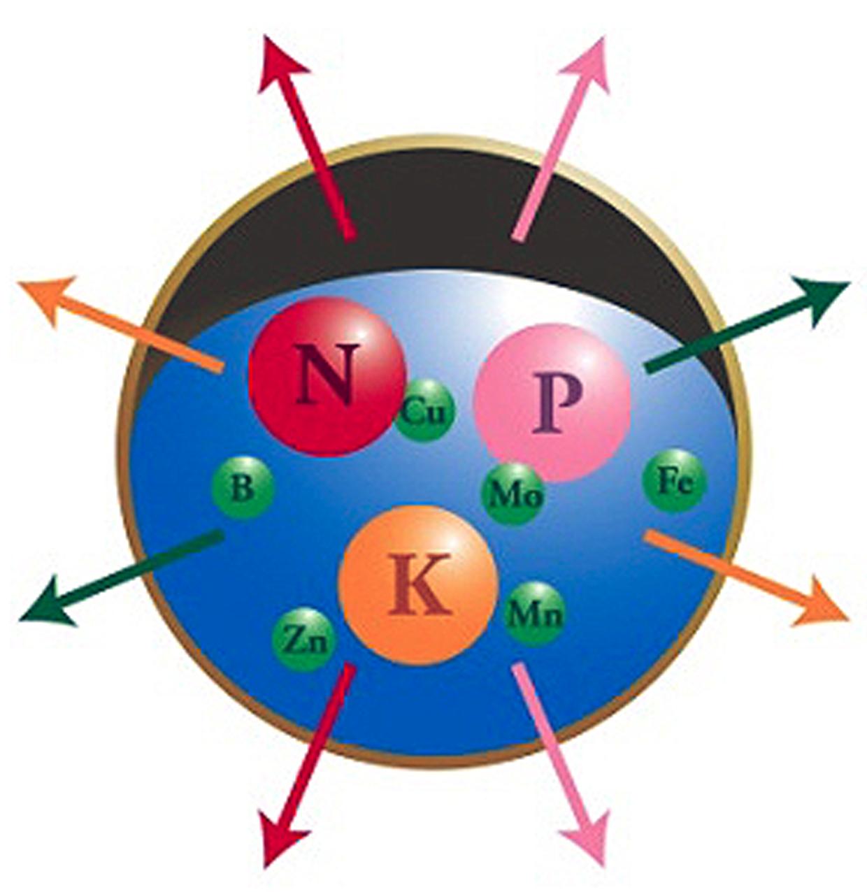 npk-skitbild